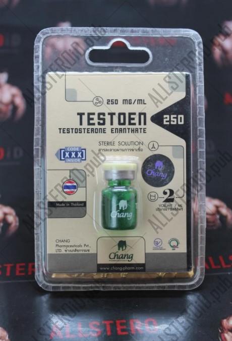 TestoEn 250 (Chang Pharma)